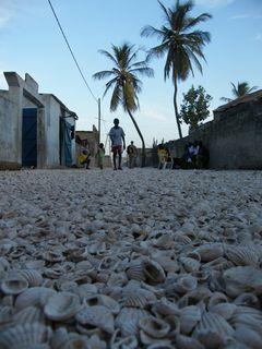 Les rues du village, tapissées de coquillages